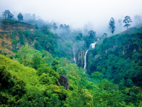 Экскурсионный тур на Шри-Ланку * Достопримечательности Шри Ланки - 03 ночи /04 дня *