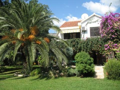 Lidia villa 3 *