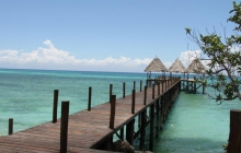 Fruit & Spice Wellness Resort Zanzibar 5 *